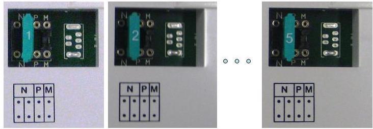 Configuracion Monitores Tegui